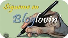 Seguidme en Bloglovin