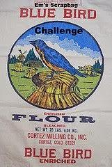 Blue Bird Challenge