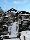 Min trädgårdsblogg i vinterskrud