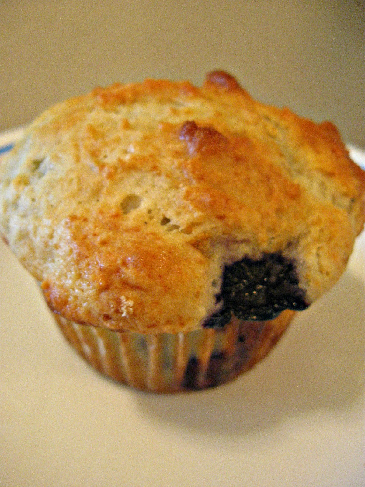 THE REHOMESTEADERS: Sour Cream Blueberry Muffins