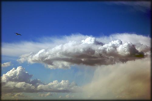 Dincolo de nori...
