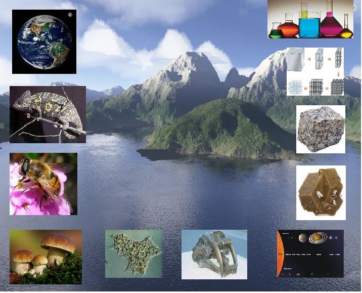 external image cienciasnaturales1.jpg