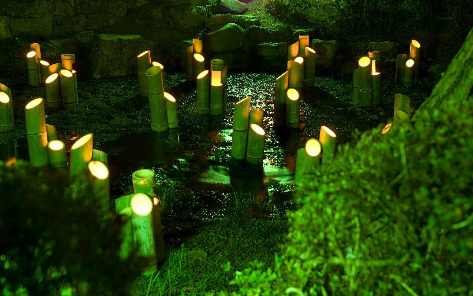 http://2.bp.blogspot.com/-TKUKyp4h9Ko/TnsEm_QjEpI/AAAAAAAAAc4/054-A3gzxq0/s1600/Japan+Nature++2011.jpg