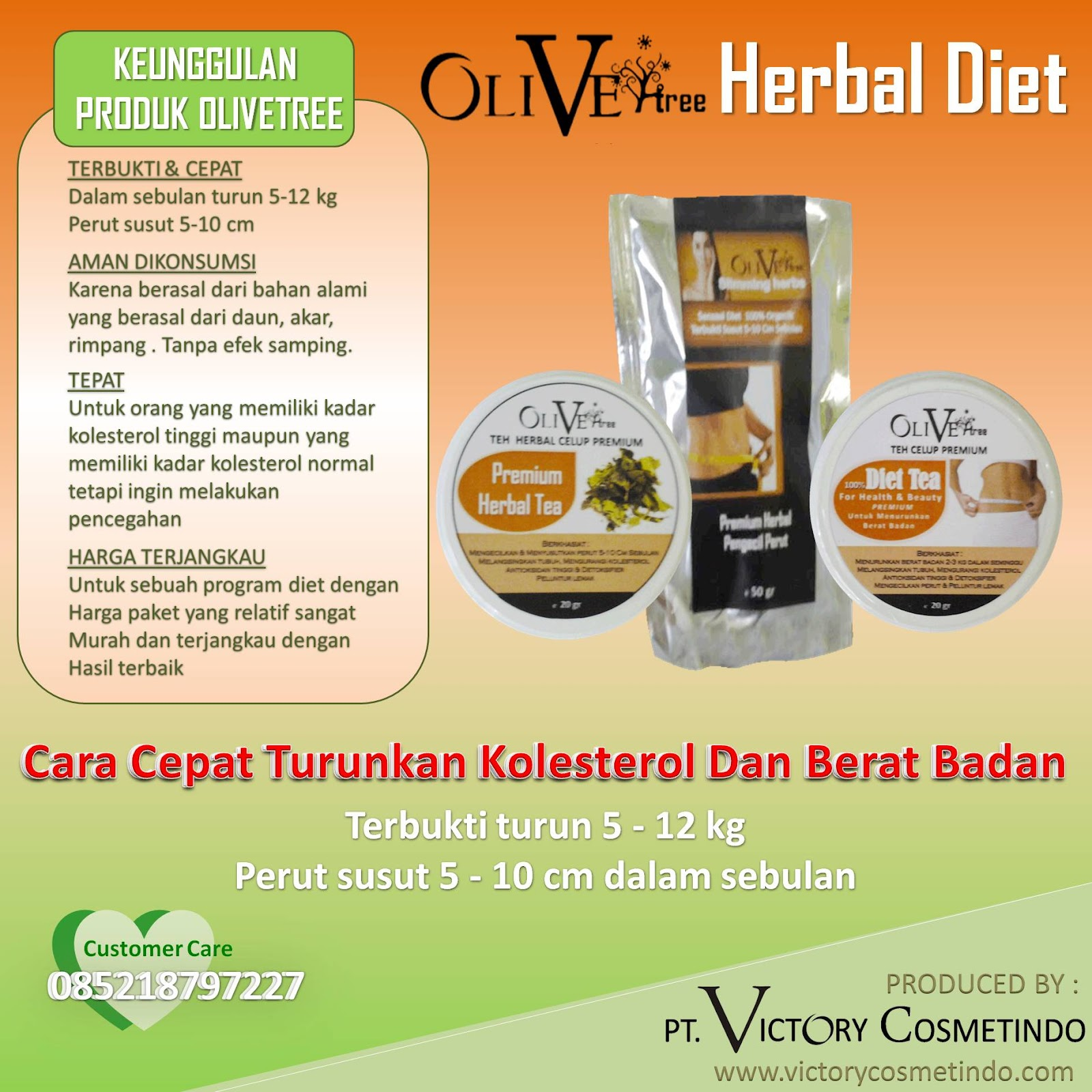 OLIVETREE DIET TEA – HERBAL PELANGSING