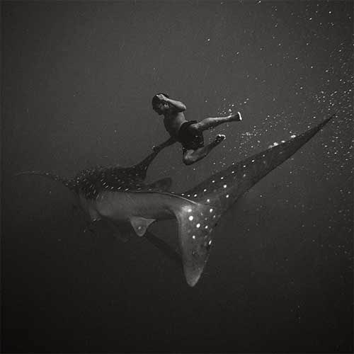 Fotografi Underwater Indonesia Hengki Koentcoro