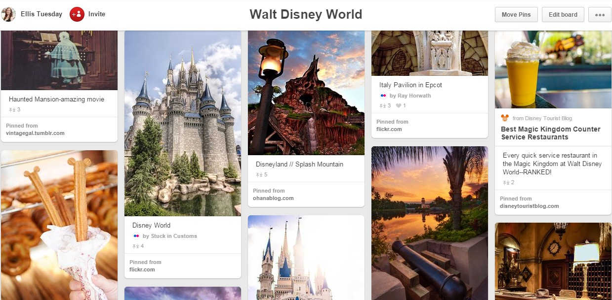 Walt Disney World Travel Board Pinterest
