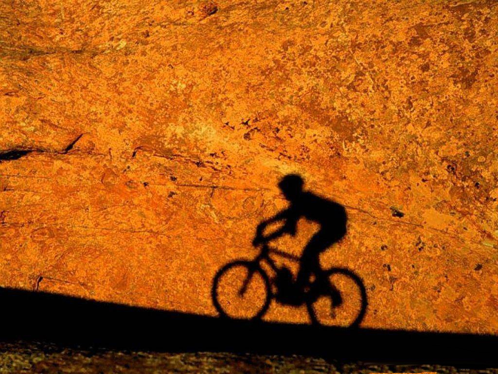 14 Mountain Bike HD Wallpapers | Backgrounds - Wallpaper Abyss