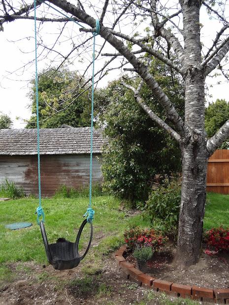 budget friendly landscaping diy