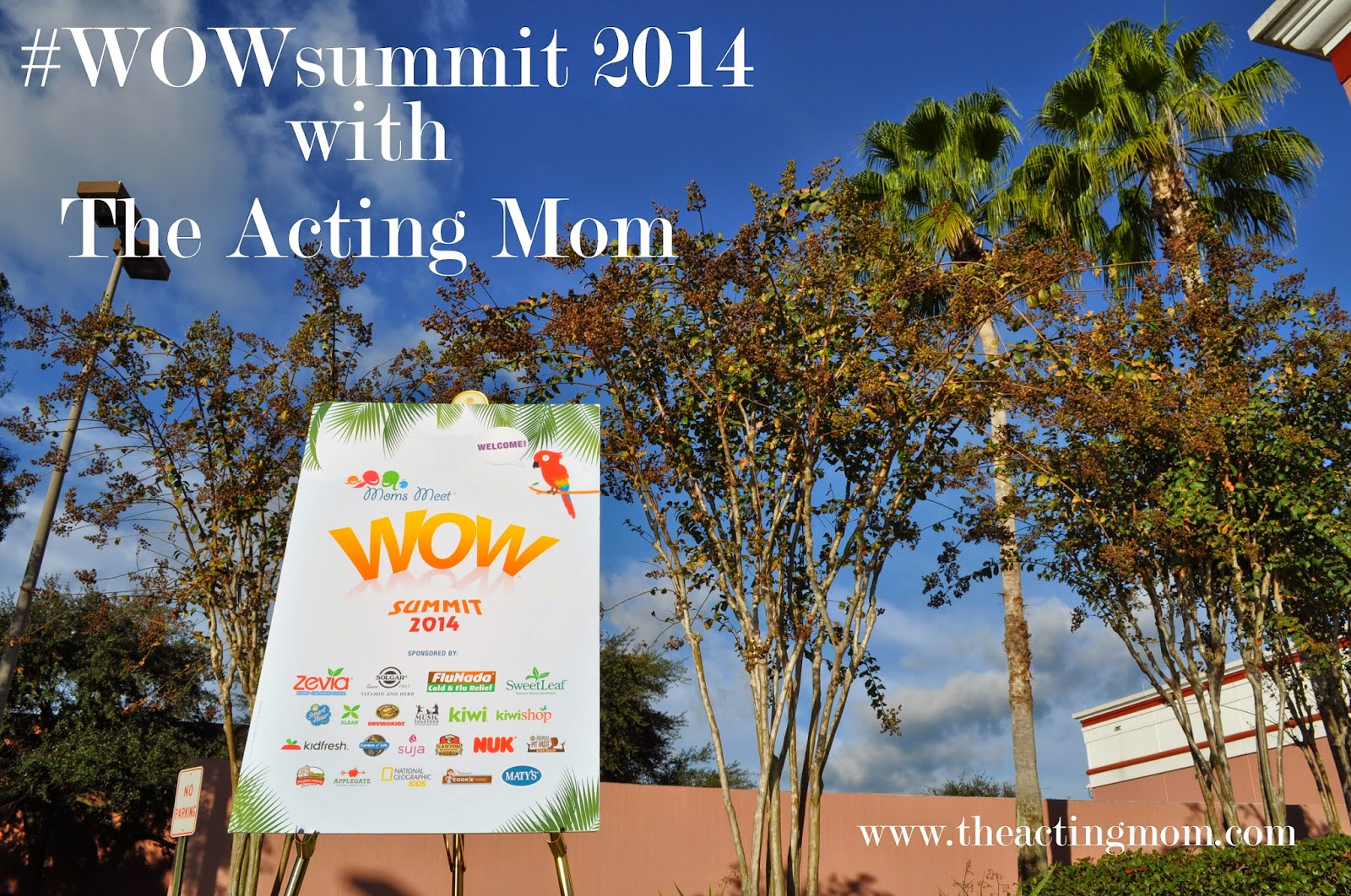 #WOWsummit with The Acting Mom
