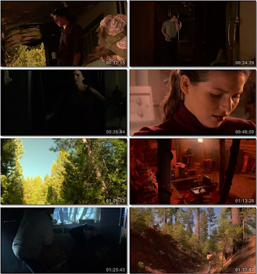 Grizzly Flats (2011) DVDRip 450MB