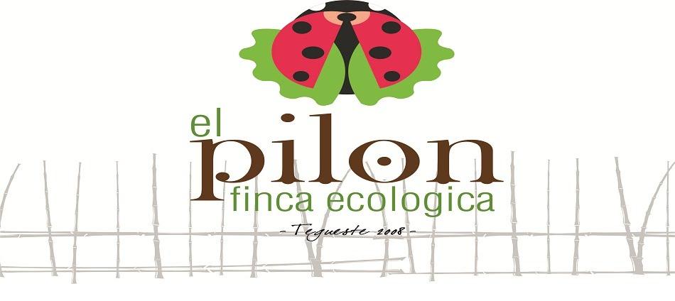 Finca Ecológica el Pilón