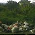 Tumpukan Sampah Di Sekitar RSUD Mamuju Keluhkan Warga