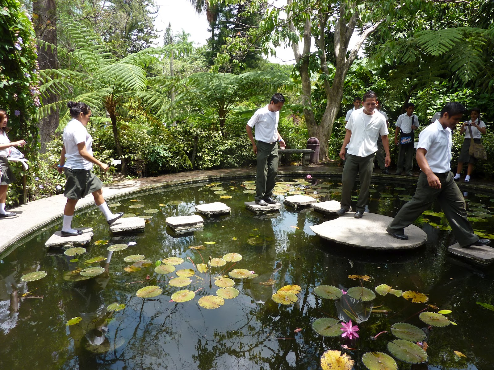 A year in the country with a smile un a o en el pa s con for Lagunas de jardin