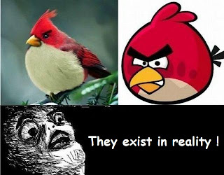 lol pic : Angry birds actually exist !