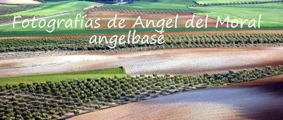 """FOTOGRAFÍAS DE ANGEL DEL MORAL """"angelbasé"""" HUELMA (Jaén)"""