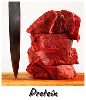 Kelas makanan : protein