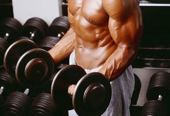 Como aumentar la masa muscular naturalmente
