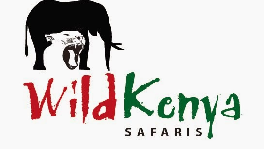 Our Website. Choose Your Safari Here !