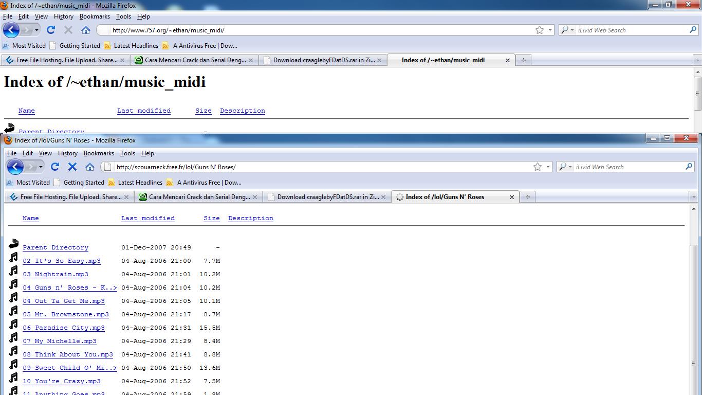 Download Software Free Google Hack 1.6.3
