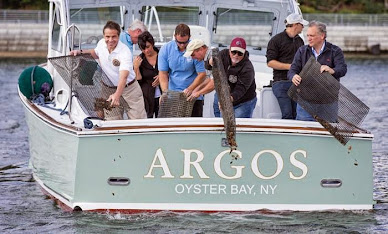 Governor Cuomo Seeding Oysters With Billy Joel off Long Island