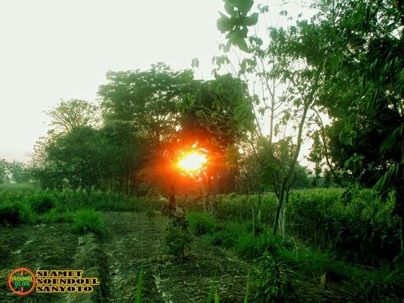 Memotret Matahari Terbit Di Kediren Magetan