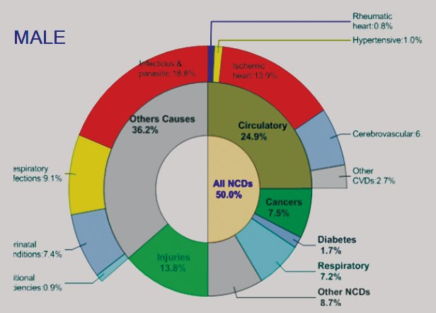 Dyslipidemia in Obesity: Mechanisms and Potential Targets