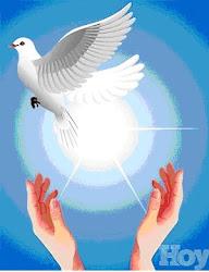 30 enero: Día de la paz