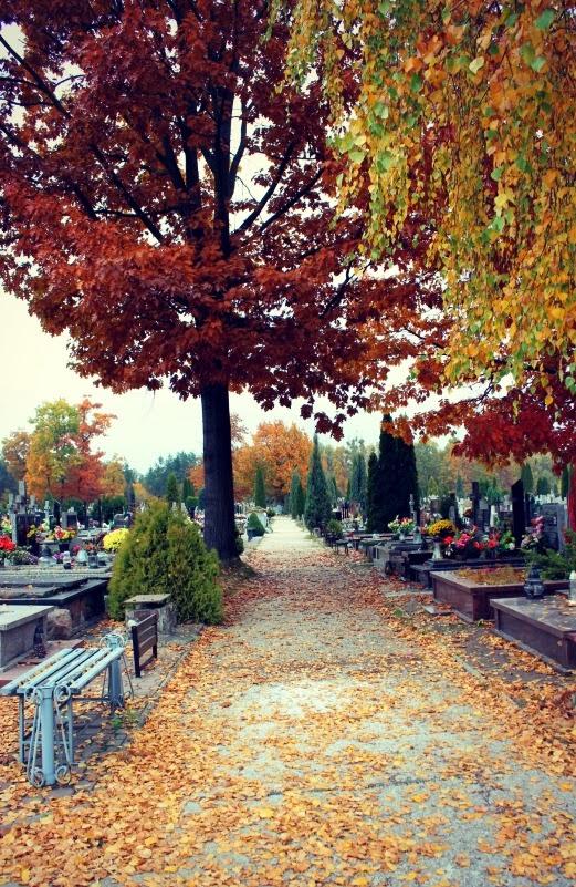 cementerio en polonia