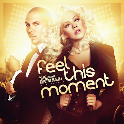 Pitbull - Feel This Moment ft. Christina Aguilera[HD 1080p] SkullCop ...