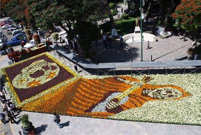 Sembradío de Flor de Muerto Cempasúchitl Flor de Flickr - Imagenes De Flores De Cempasuchil