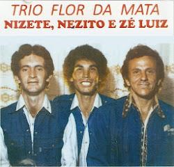 Baixe o Lp Trio Flor Da Mata  .clik: dow Imagem