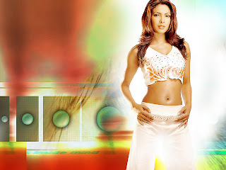 Unseen Hot Priyanka Chopra HD photo wallpapers 2012