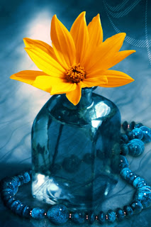 Yellow Flower iPhone Wallpaper