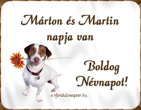 November 11 - Márton, Martin névnap