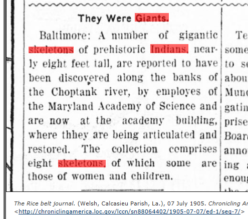 1905.07.07 - The Rice Belt Journal
