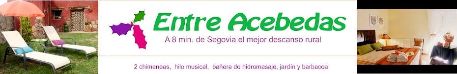 Casa Entre Acebedas: estancia rural en Segovia