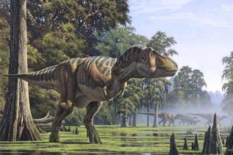 Mats ordenruntresa: Tyrannosaurus rex lik en kyckling?
