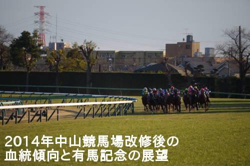 2014年中山競馬場改修後の血統傾向と有馬記念の展望
