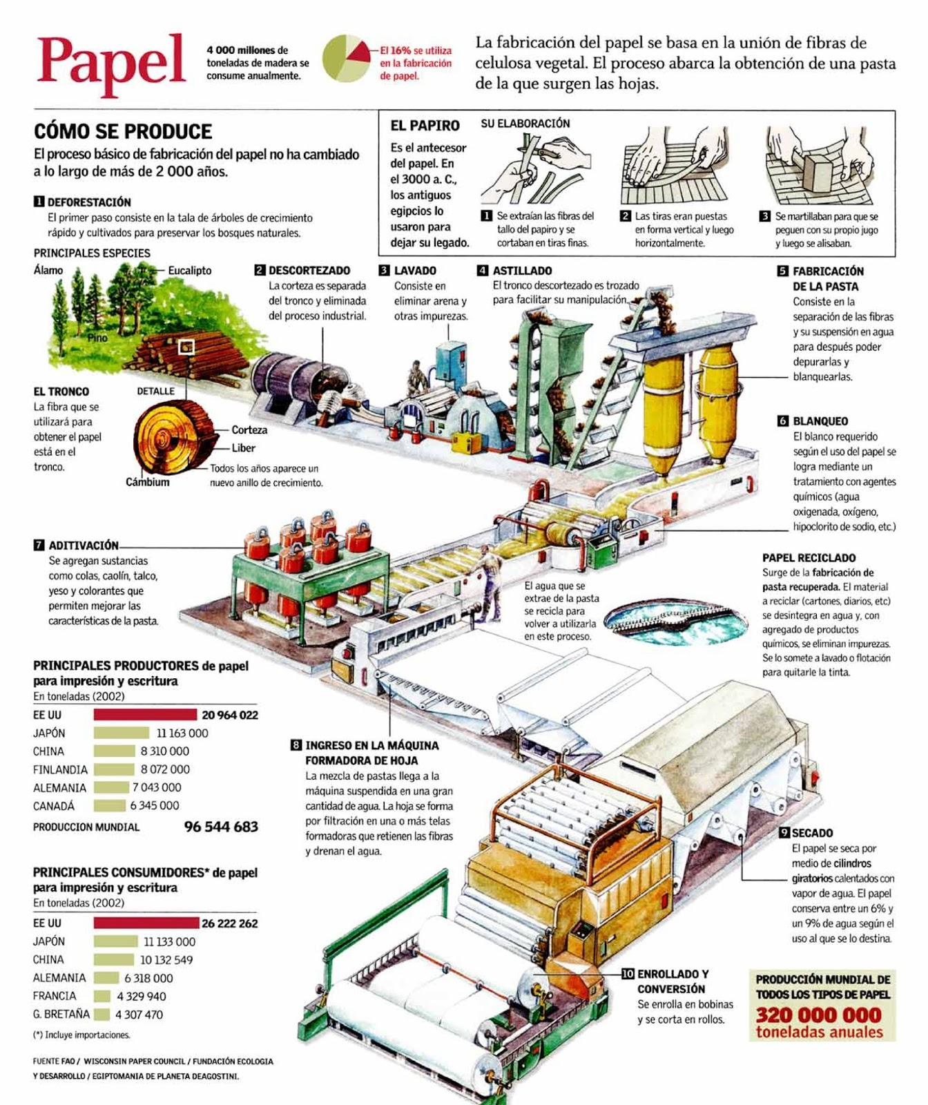 Tecnolog a edh infograf a proceso de producci n del papel for Descripcion del proceso de produccion