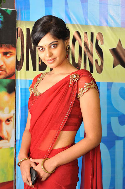 Bindu Madhavi In Full Saree 6