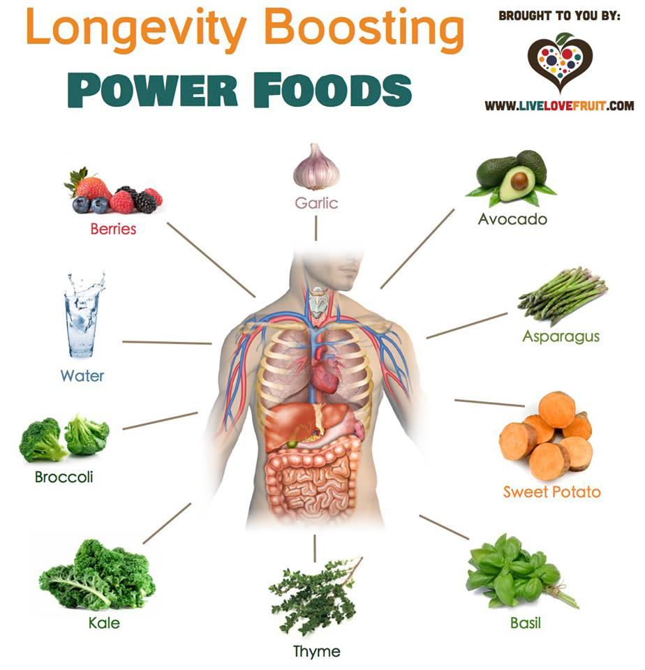Better Nutrition for Better Brain Power