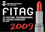 Participation in the Festival Theatre