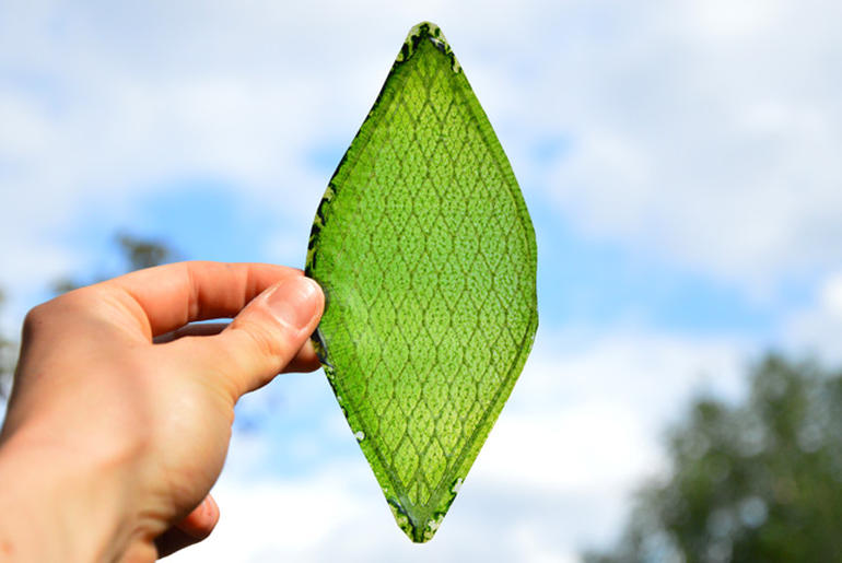 This man-made leaf could help us breathe in space.