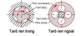 Taro ren Ruko Đức