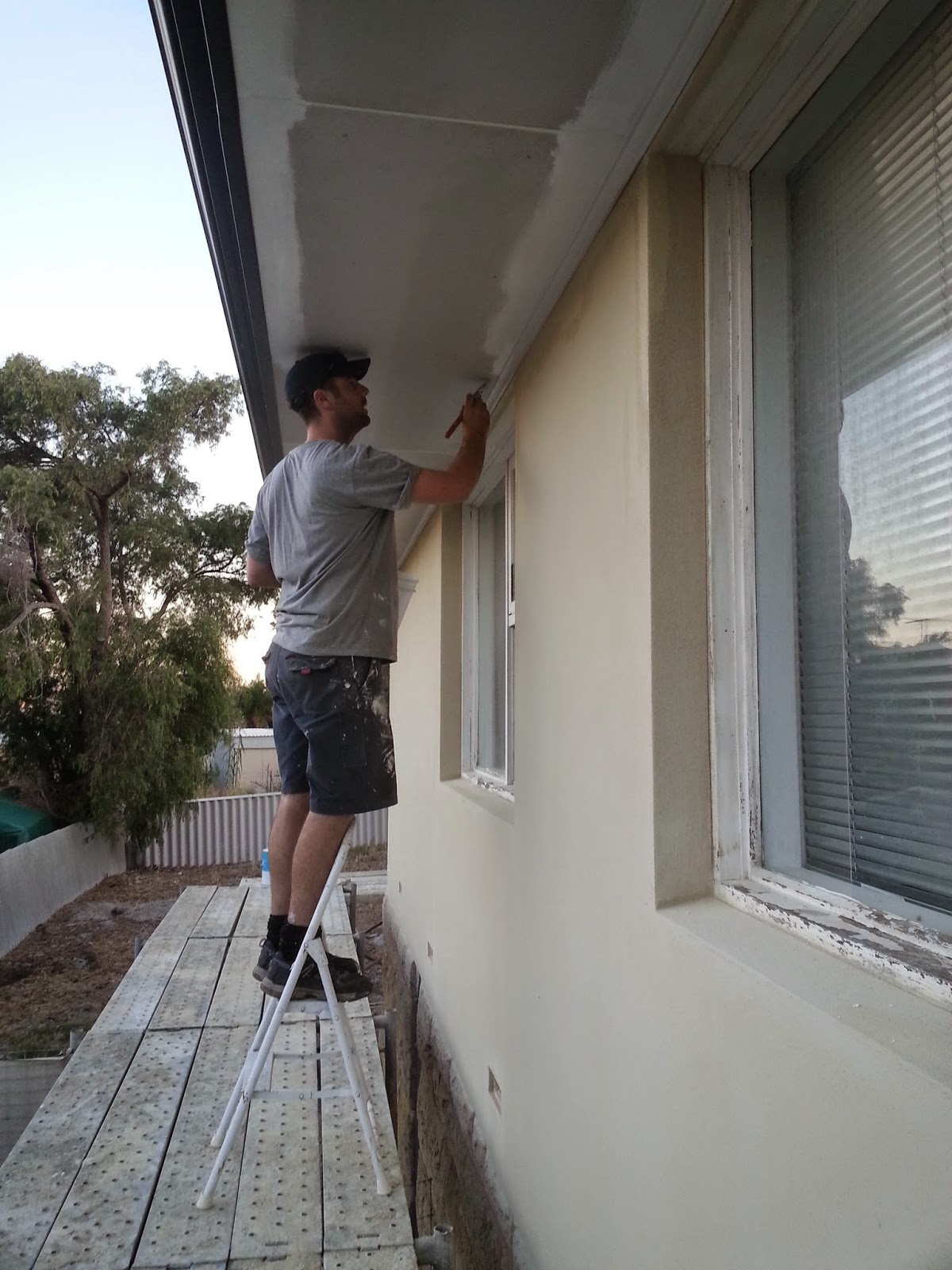jarrah jungle painting the exterior walls and window