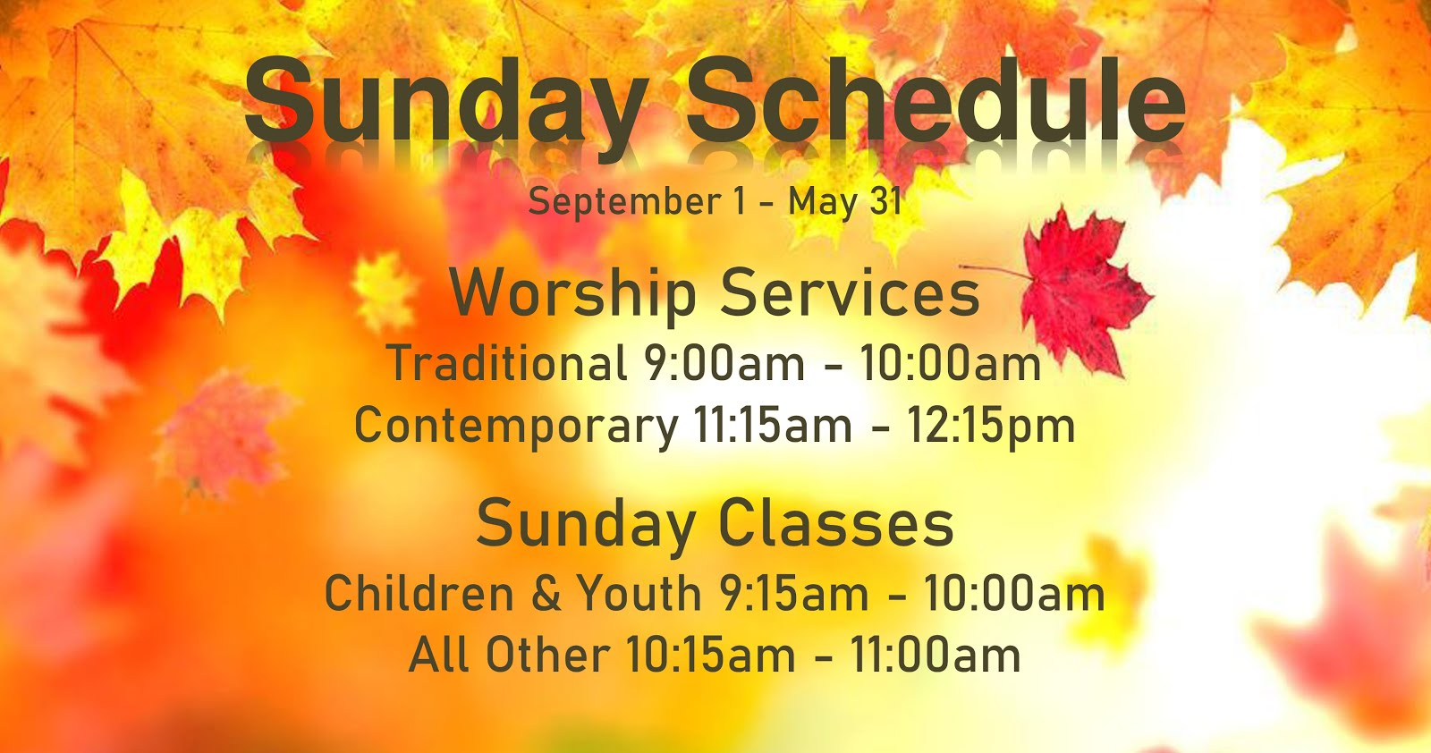 Sunday Schedule