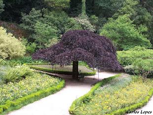 Jardim do Palácio Hotel do Buçaco