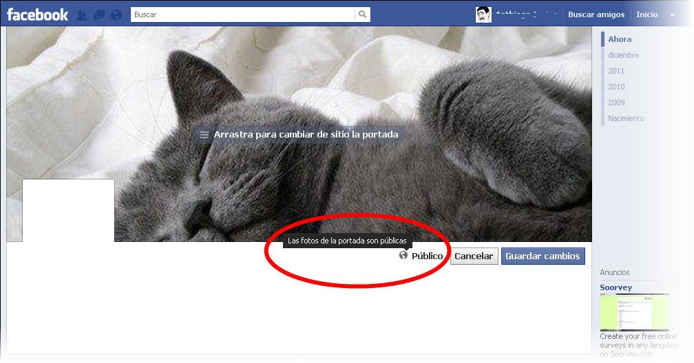 En facebook la foto de portada es pública la puede ver y descargar