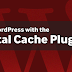 W3 Total Cache Plugin Vulnerability allows Hackers to steal password and db info