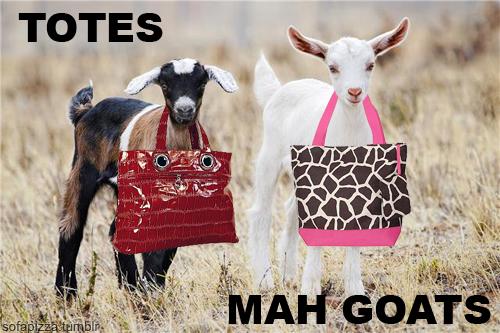 http://2.bp.blogspot.com/-TS4Fm-ixI6c/TZwx_CEBkpI/AAAAAAAAA-0/RedHKVc8MgI/s1600/totes+mah+goats+.jpg